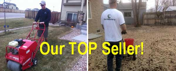 raking-top-seller