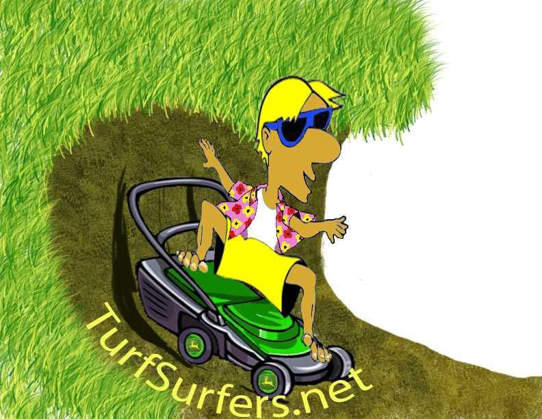 surfer-pic